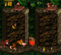 DKC Screenshot Geier-Feier.png