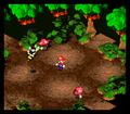 SMRPG Screenshot Forest Maze.png