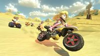 MK8 Screenshot Peach 1.jpg